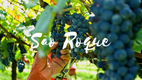 São Roque: Fim de Semana Rota do Vinho + Ski Mountain Park
